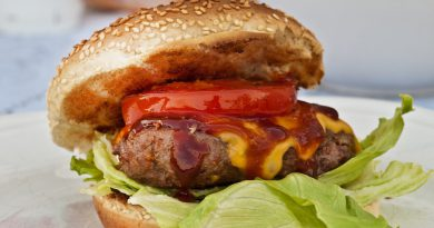 Migliori Piastre per Hamburger 2